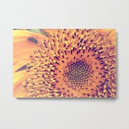 Natures Sunshine Metal Print