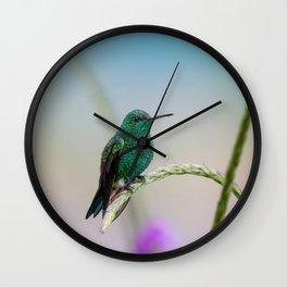 Costa Rican Hummingbird Wall Clock