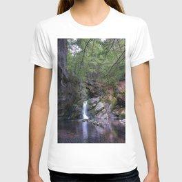 Purgatory Falls NH in May T-shirt
