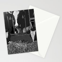 Black & White Cattle Feeding Pencil Drawing Photo Stationery Cards