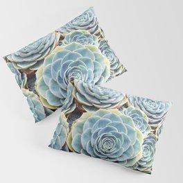 Succulent Garden Pillow Sham