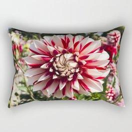Dahlia In The Garden / 29 Rectangular Pillow