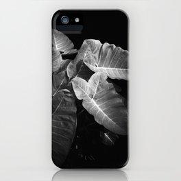 Elephant Ears in the Dark iPhone Case
