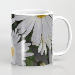 Daisies in Alaska Coffee Mug