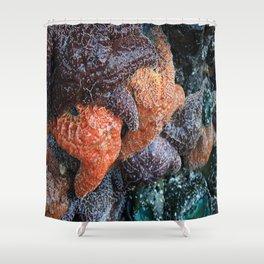 Starfish Huddle Shower Curtain