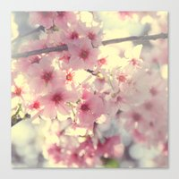 cherry blossom Canvas Prints featuring cherry blossom by Bunny Noir