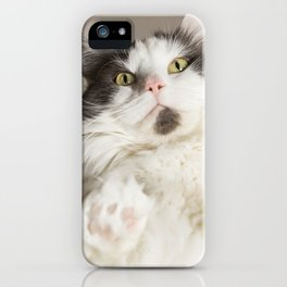 Cat on Glass iPhone Case