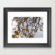 Yelow Framed Art Print