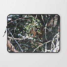Squirrel in Tree Laptop Sleeve