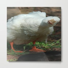 Are you talking to me?? Metal Print