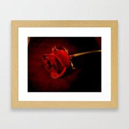 Rose #4 Framed Art Print