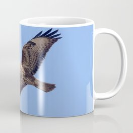 Common Buzzard (Buteo buteo) in flight Coffee Mug