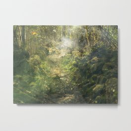 forest, rocks Metal Print