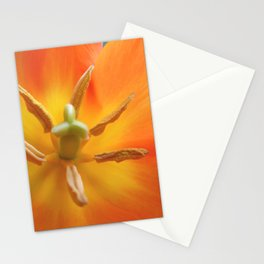 Lily-Flowered Tulip Stationery Cards