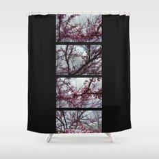 Under the trees: early spring Shower Curtain