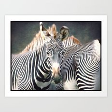 A plethora of stripes...! Art Print