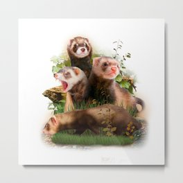 Four Ferrets in Their Wild Habitat Metal Print