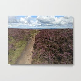 Moorland Metal Print