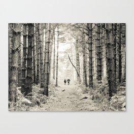 Forest Walk II Canvas Print