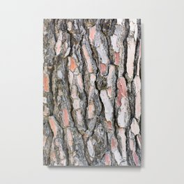Pine bark pattern Metal Print
