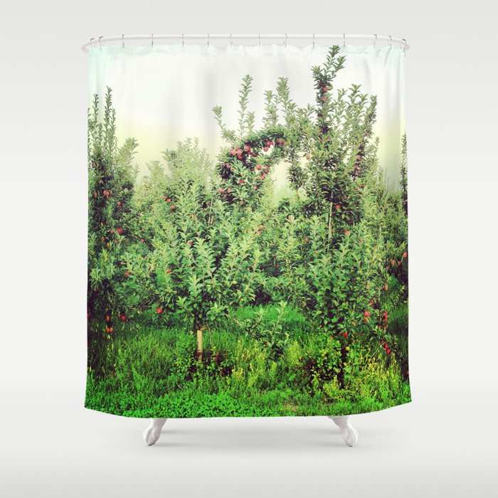 Upstate Apple Orchard  Shower Curtain