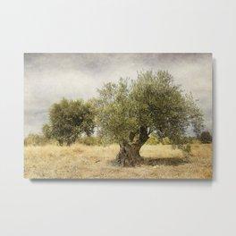 mediterranean landscape #3 Metal Print