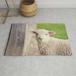Little Lamb I Rug