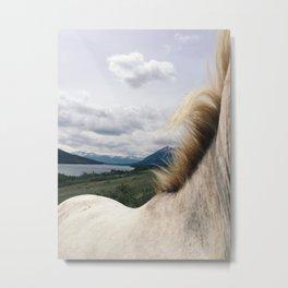 Horse Back Metal Print