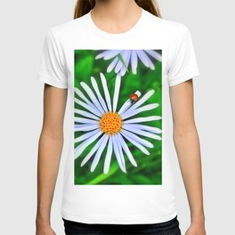 Blue daisy and a ladybird T-shirt