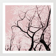Cherry Blossom Dance Art Print