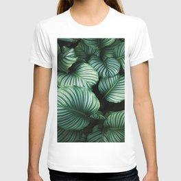 Nature Poster, Wood Wall ART, Framed Wall Art, Duvet Cover, Pillow Sham T-shirt
