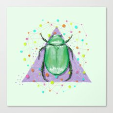 INSECT III Canvas Print
