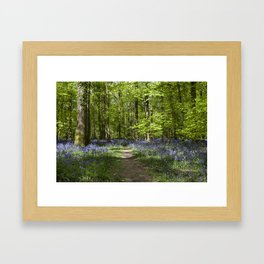 Footpath Through the Bells Framed Art Print