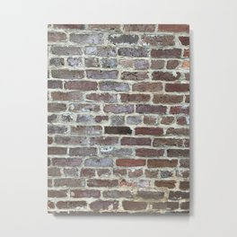 Old Brick Wall, Charleston, SC Metal Print