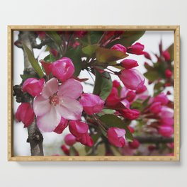 Spring blossoms - Strawberry Parfait Crabapple Serving Tray