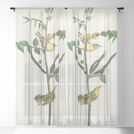 Childrens Warbler from Birds of America (1827) by John James Audubon etched by William Home Lizars Sheer Curtain