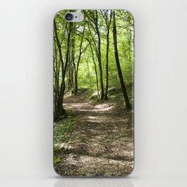 Walkpath iPhone Skin