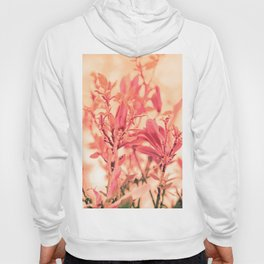 Magnolia Love in Apricot Hoody