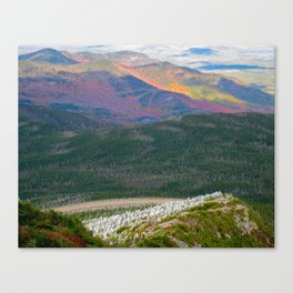 A Touch of Frost in Autumn Canvas Print