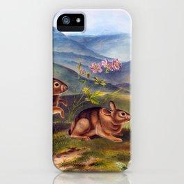 Bunny Rabbit, Bunny, Lepus nuttallii, Nuttall's Hare, Males, Natural size, Audubon Quadrupeds Antique Print Plate 19 iPhone Case