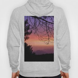 Purple sunset. At the woods Hoody