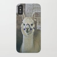 alpaca iPhone & iPod Cases featuring White Alpaca  by Laura Ruth