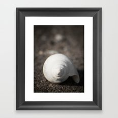 Treasures from the see #3 Framed Art Print