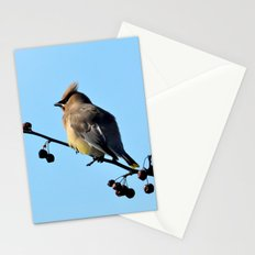 Waxwing on a Winter's Day Stationery Cards