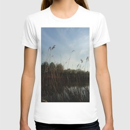 Nature and landscape 5 reed T-shirt