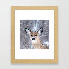 Oh deer, oh deer Framed Art Print