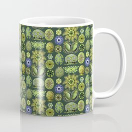 Ernst Haeckel Ascidiae Sea Squirts in Green Coffee Mug