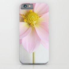 Powder Pink Dahlia iPhone 6s Slim Case