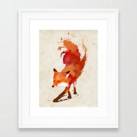 red Framed Art Prints featuring Vulpes vulpes by Robert Farkas