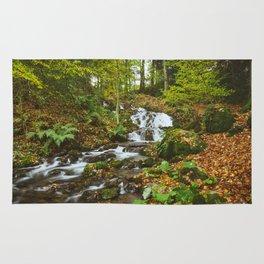 Waterfall to Lake Windermere at Millerground Landing. Lake District, UK. Rug